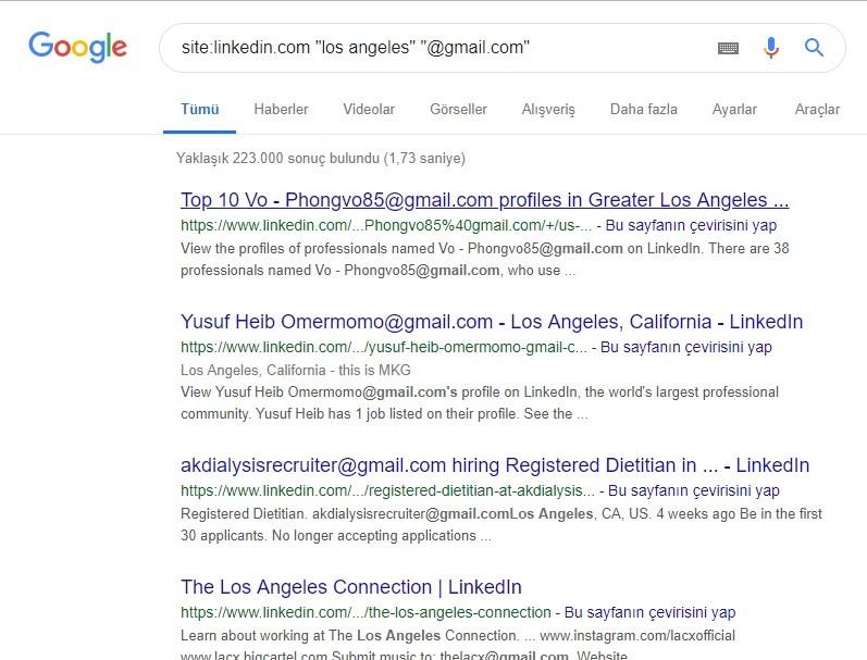 Google Dorks Linkedin